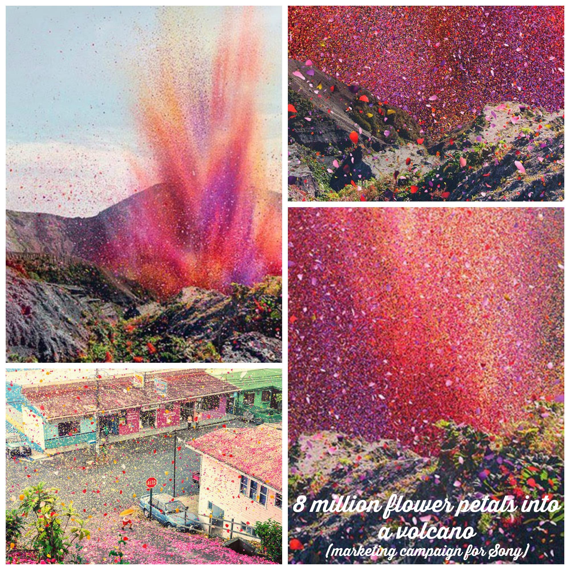 petals into volcano