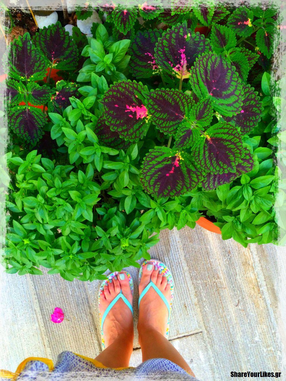 feet selfie_palia poli