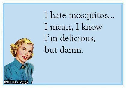 image via http://www.wititudes.com/hate-mosquitos-know-delicious-damn-ecard/#.VbI3IdKUegJ